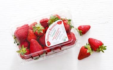 Harry's Berries Organic Gaviota Strawberries