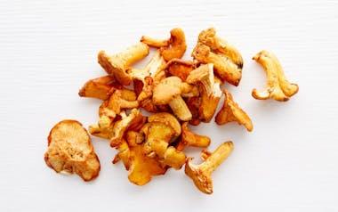 Foraged Wild Chanterelle Mushrooms