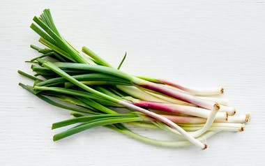 Organic Red Spring Onion