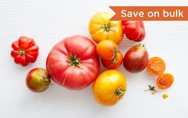 Bulk Organic & Fair Trade Mixed Heirloom Tomatoes (Mexico)