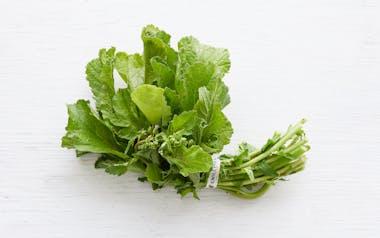 Organic Bunched Rapini Greens