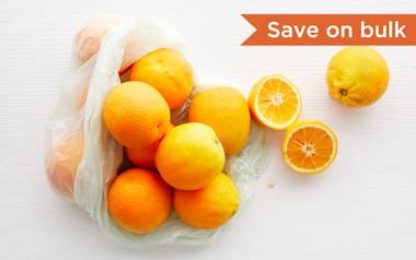 Bulk Organic Valencia Oranges