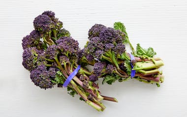Organic Purple Baby Broccoli Trio