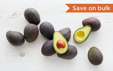 Ten Organic Small Hass Avocados