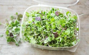 Organic Micro Mix