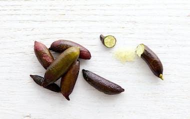 Organic Finger Limes (Caviar Limes)