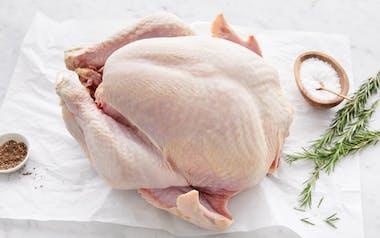 Broad Breasted Turkey (10-12 lb)