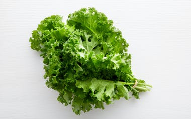 Aquaponic Green Curly Kale