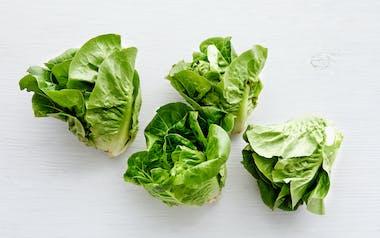 Organic Little Gem Lettuces