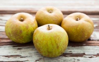 Organic & Biodynamic Golden Russet Apples