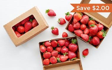 Organic Strawberry 3-Pack