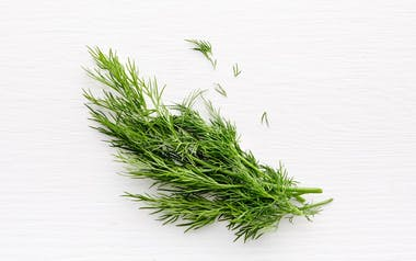 Pinch of Baby Dill