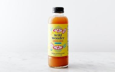 Organic Ginger Lemon Sparkling Tea Tonic
